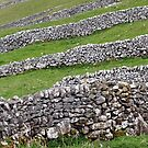 The Dales Divided by mattslinn
