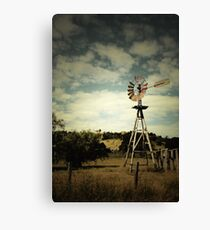 Catching the Wind II Canvas Print