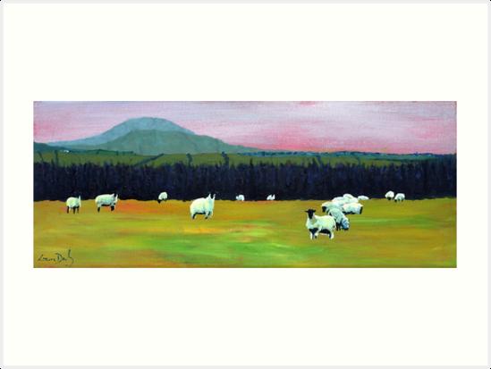 Evening Sheep (Ireland) by eolai