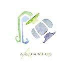 Aquarius Water Bearer Zodiac Starsign || Astrological Signs by SoNifty