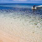 Fijian beach by Explorations Africa Dan MacKenzie