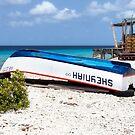 Bonaire. Old Boat by Yelena Rozov