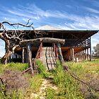 Kinchega Woolshed, NSW by Christine Smith