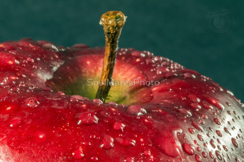 Apple by SoulMatesPhoto