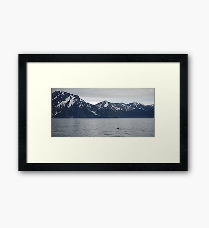 the lone sea wolf... Framed Print