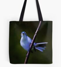 Blue Gray Gnatcatcher 1 Tote Bag