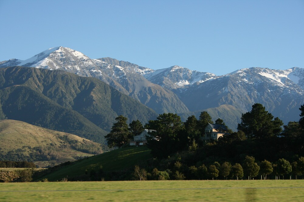 Typical New Zealand  by Ouzopuppy