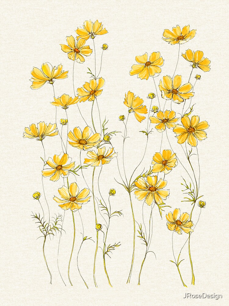 Yellow Cosmos Flowers by JRoseDesign