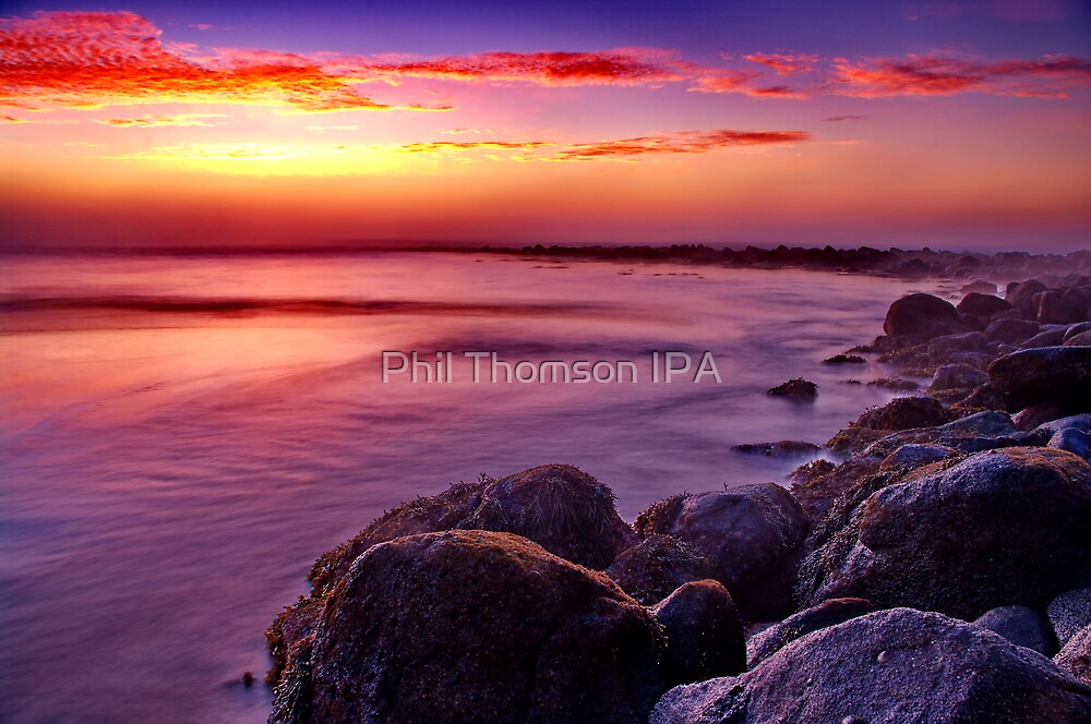 """Morning Symphony"" by Phil Thomson IPA"