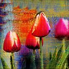 Weathered Tulips by Darlene Lankford Honeycutt