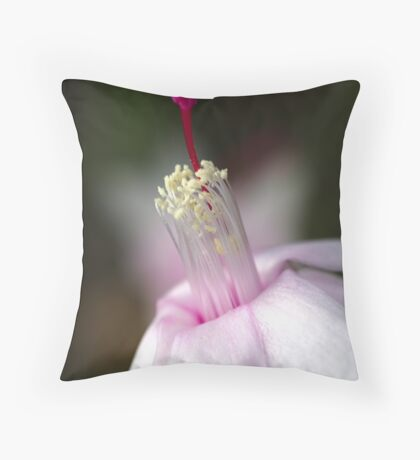 Pink Zygocactus Throw Pillow
