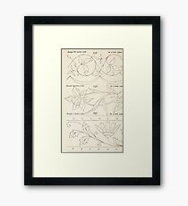 Briggs & Company Patent Transferring Papers Kate Greenaway 1886 0044 Framed Print