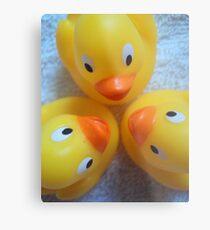 Quack? Quack. Quack! Metal Print