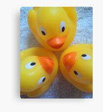 Quack? Quack. Quack! Canvas Print