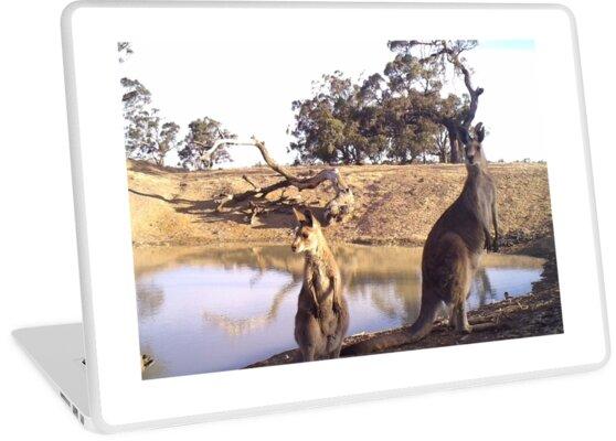 Standing Kangaroos by Brian Lea