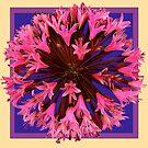 Flowers explosion by Tatyana Binovskaya