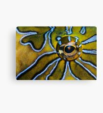 Eye-Liner Canvas Print
