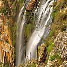 Minyon Falls Top by Penny Smith