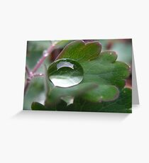 Pure reflections Greeting Card