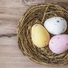 Chocolate eggs in a nest by Sara Sadler