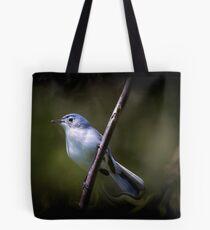 Blue Gray Gnatcatcher 3 Tote Bag