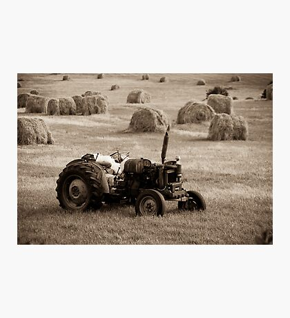 Field Worker Photographic Print