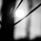 Black and White Abstract by auroralee1013