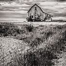 Old Barn and Truck by auroralee1013