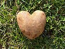 Heart Shaped Potato by FrankieCat