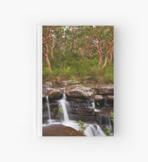 Lifeblood Hardcover Journal