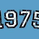 Year 1975 Vintage Birthday by theshirtshops