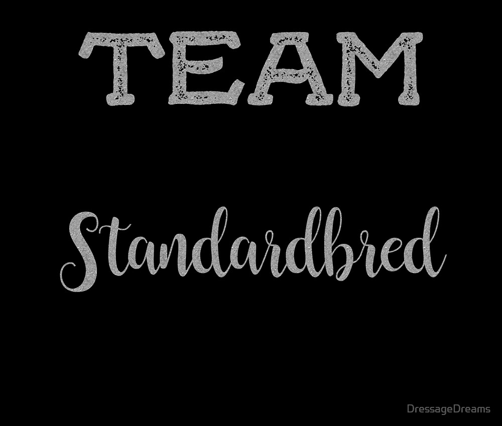 Team Standardbred- Silver by DressageDreams