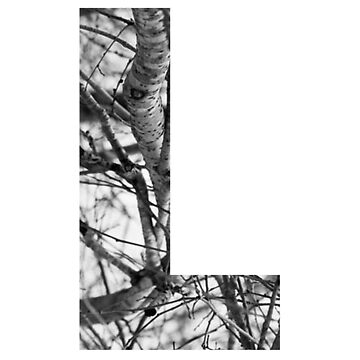 Tree letter L by PCollection