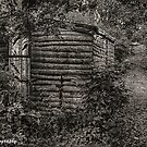 The SHACK on the mountain trail.. by buddybetsy