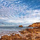 Blick auf Rocky Point, Victoria von Christine Smith