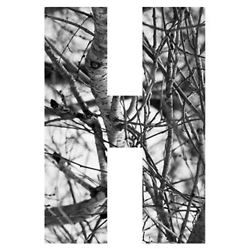 Tree letter H by PCollection