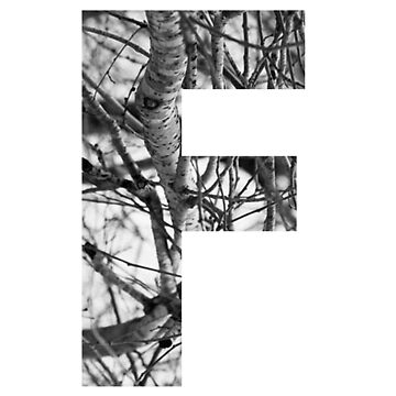 Tree letter F by PCollection