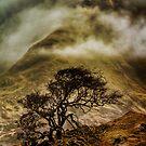 Misty Isle (1) by Karl Williams