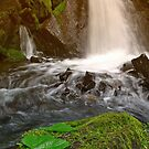 Falls at Hazelton by Istvan Hernadi