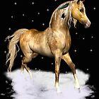 Spirit Horse by LoneAngel