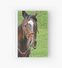 Equine Beauty Hardcover Journal