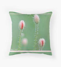 Field poppies, Papaver rhoeas C Throw Pillow