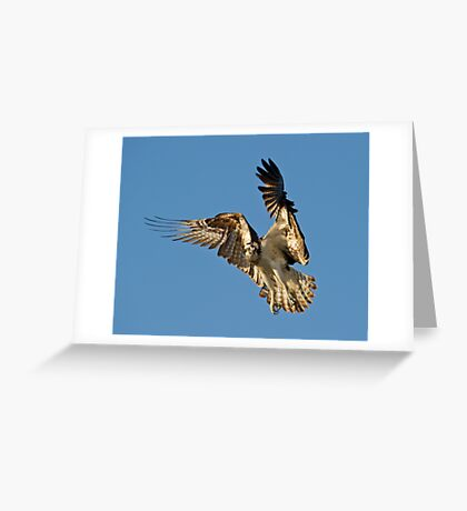 Stop it right there! Greeting Card
