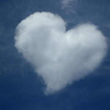 Love is in the Air by ChateauGlenunga