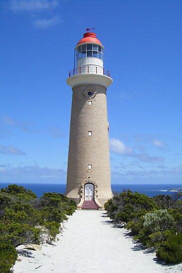 Blue skys of Kangaroo Island by Jane  Campbell