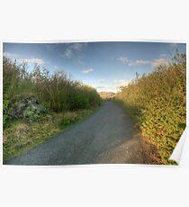 Burren Country road Poster