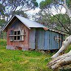 JB Plain Hut by Harry Oldmeadow