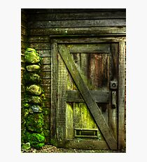The Old Mossy Door Photographic Print