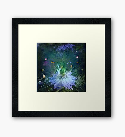 Underwater garden , or is it? Framed Print