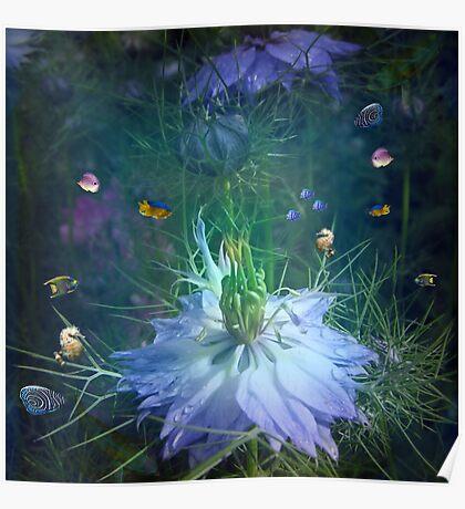 Underwater garden , or is it? Poster